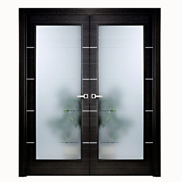 Aries Modern Interior Double Door Black With Glass Panels