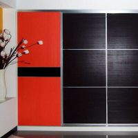 Aries Closet Door Black Red CSD 51 Acrylic Mdf - Aries ...