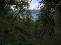 Bergsete opp Kvannaskard-014