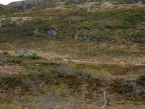 Bergsete opp Kvannaskard-045