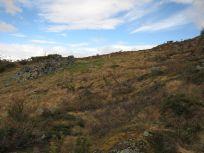 Bergsete opp Kvannaskard-050