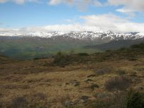Bergsete opp Kvannaskard-052