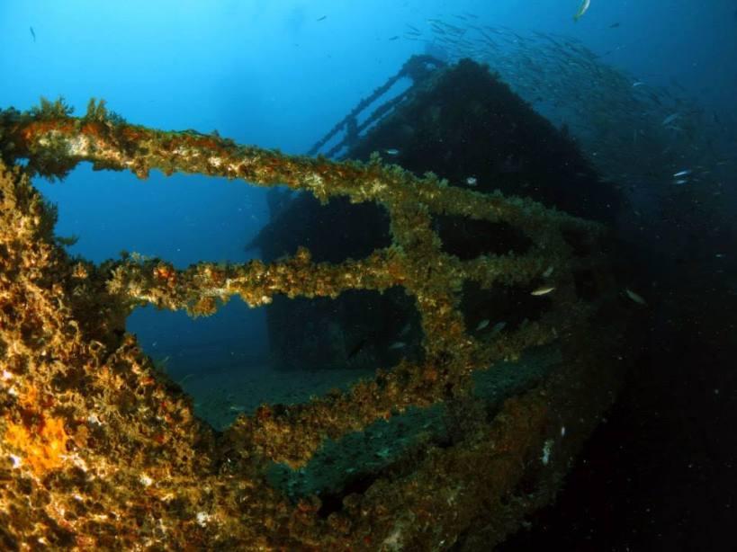 Dolphin 88 Wreck