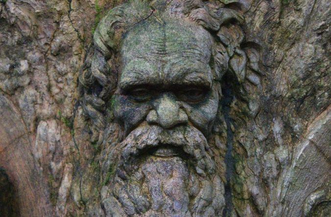 An Aboriginal face in William Ricketts Sanctuary.