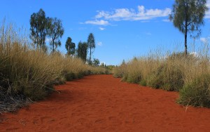 Red and green, the main colours of Australia.