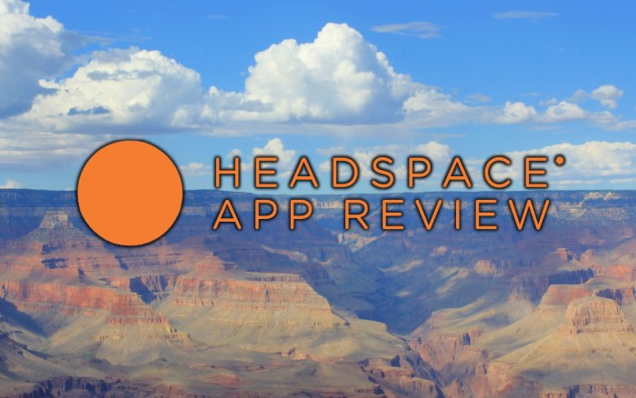 Headspace app review