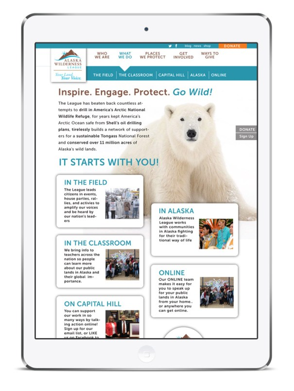 Nonprofit website design to drive donations and raise awareness