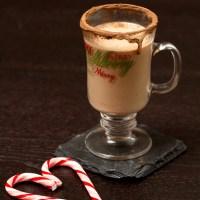 DIY Mint Chocolate Baileys Irish Cream {Vegan}
