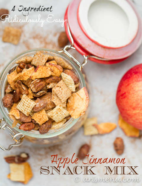 Ridiculously Easy 4 Ingredient Apple Cinnamon Snack Mix