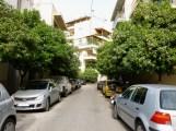 Athens-street-with-bitter-orange-trees