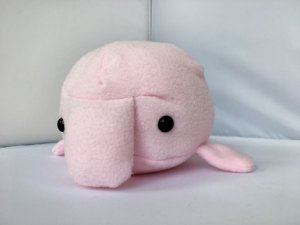 blobfish-rose-2