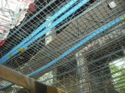 constructiondscf0511