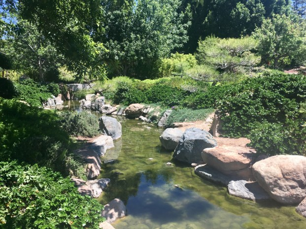 Stream in the Japanese Stroll Garden: taken by Alayna O'Keefe