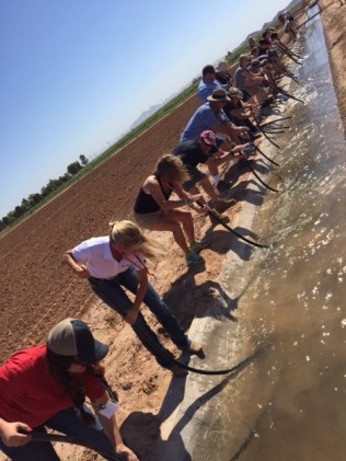 Teachers learning how to siphon water for irrigation at the Maricopa Ag Center.