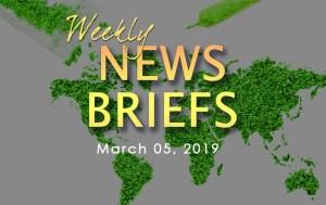 AZ CANNABIS WEEKLY NEWS BRIEFS
