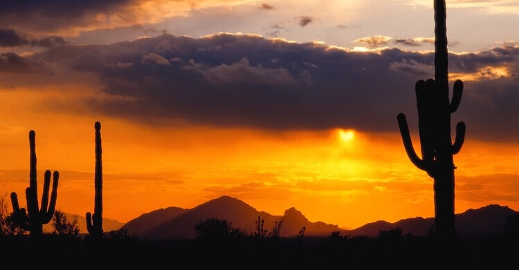 Sunset, Sonoran Desert, Arizona