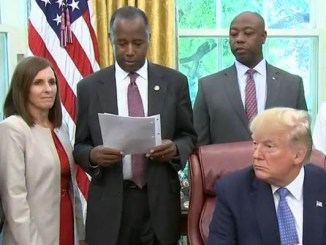 trump mcsally carson white house