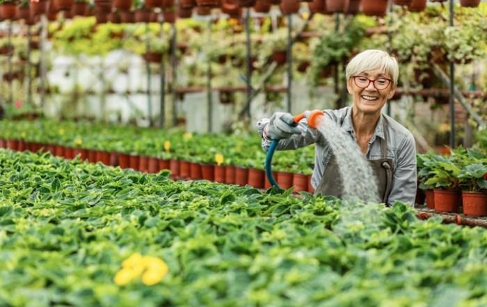 Older Adults Becoming Entrepreneurs