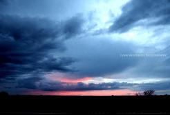 Lynn Woodruff | SR 64 1