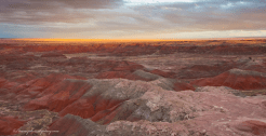 Stacy LeClair | Painted Desert