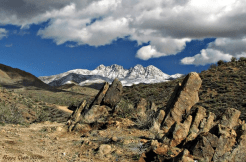 Sue Syens | Four Peaks