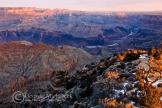Georgia Michalicek | Grand Canyon