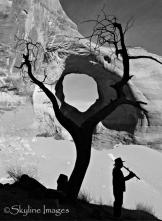 Rebecca Wilks   Monument Valley