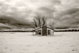 Tyanna Burton | Garland Prairie