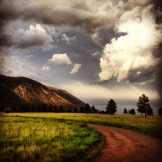 Ashlie Polder | Buffalo Park