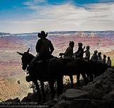Sarah Dolliver | Grand Canyon