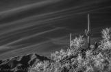 Keith Zimmerman | Apache Trail