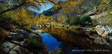 Howard Paley | Tucson