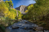 Lawrence Busch | Aravaipa Canyon Wilderness Area