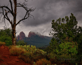 Jim Peterson‎ | Sedona