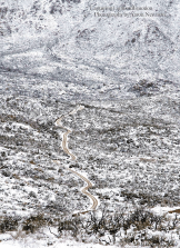 Aaron Newman | Four Peaks
