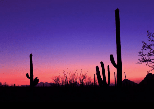 Heavenly Images by Debbie Angel | Tucson