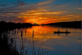 Vince Mele | Salt River