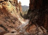 Pam Barnhart | Sierra Ancha Wilderness