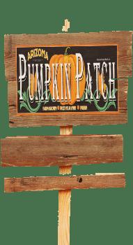 Pumpkin Patch Farm Gilbert