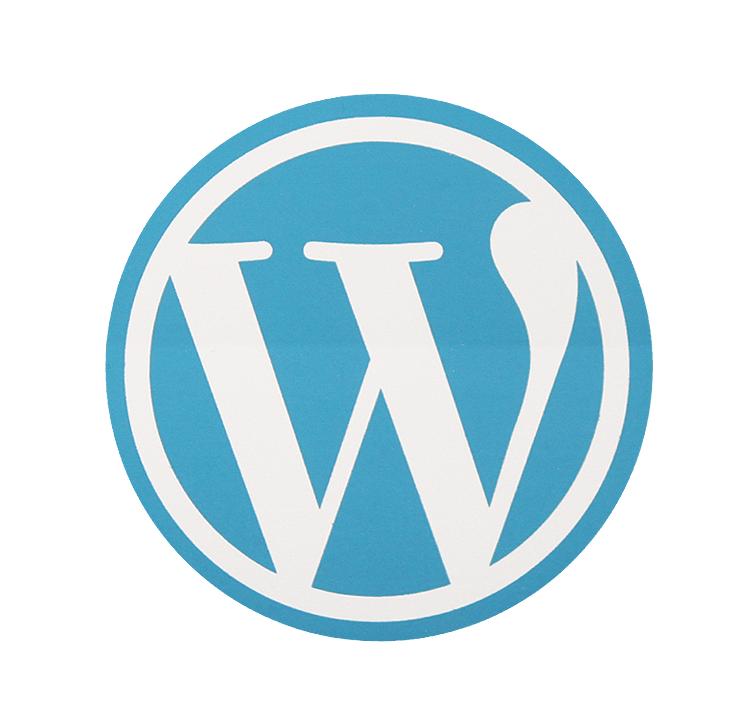 वर्डप्रेस वेबसाइट (WordPress Setup)