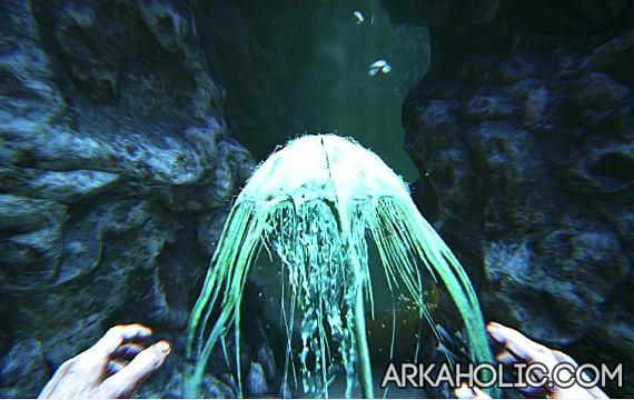 Cnidaria Dossier & Guide - ARK Survival Evolved