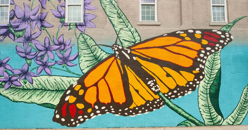 Mural of a butterfly in downtown Conway