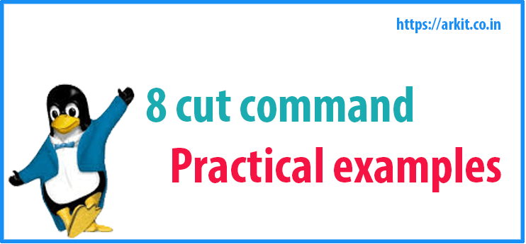 8 Cut Command Practical Examples Linux Arkit