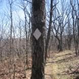 White diamond trail markers