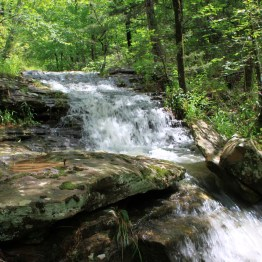 Cascades upstream from the Glory Hole Falls (during high water), Ozark National Forest
