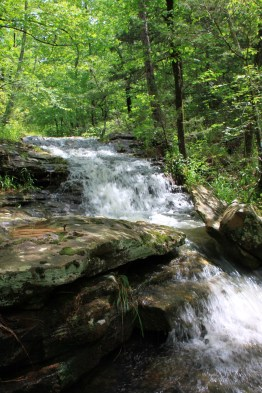 Glory Hole Falls Trail (Ozark Forest) - 2mi (o&b) photo