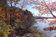 Cove Lake/Lookout Window Loop (Ozark Forest) - 4 mi photo