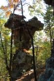Pedestal Rocks Trail (Ozark Forest) Fall Pics photo