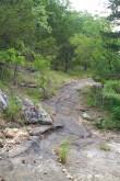 Buffalo Point: Overlook Trail Loop (Buffalo River) – 1mi photo