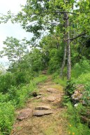 Mount Magazine: Bear Hollow Trail - 5 mi (o&b) photo
